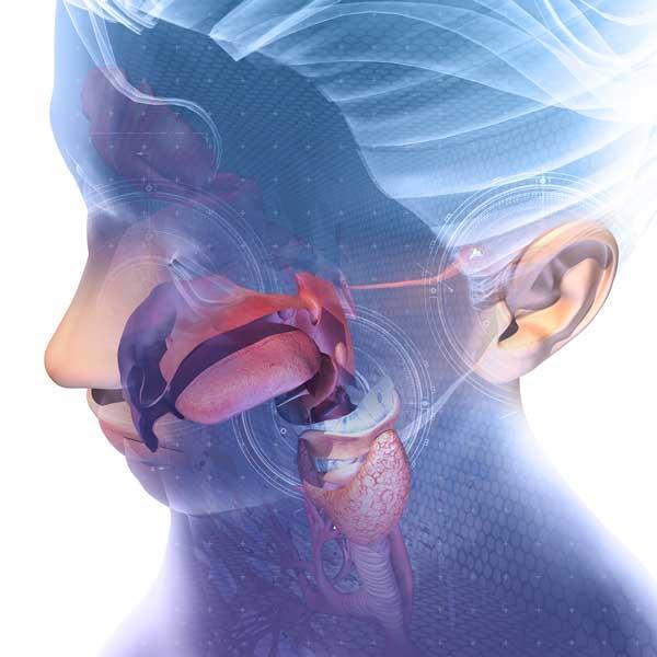 Sensación difusa detrás de las orejas