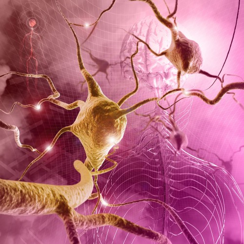 Where Brain Shakes May Be Key To >> Tremor Brain Spinal Cord And Nerve Disorders Msd Manual